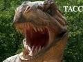 Динозавры не поддаются клонированию